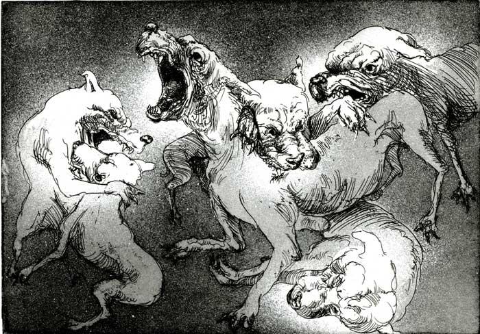 Dogfightweb