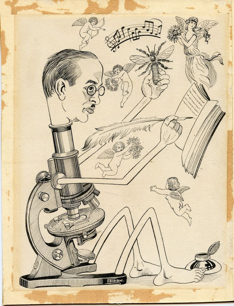 Fridon-uncropped