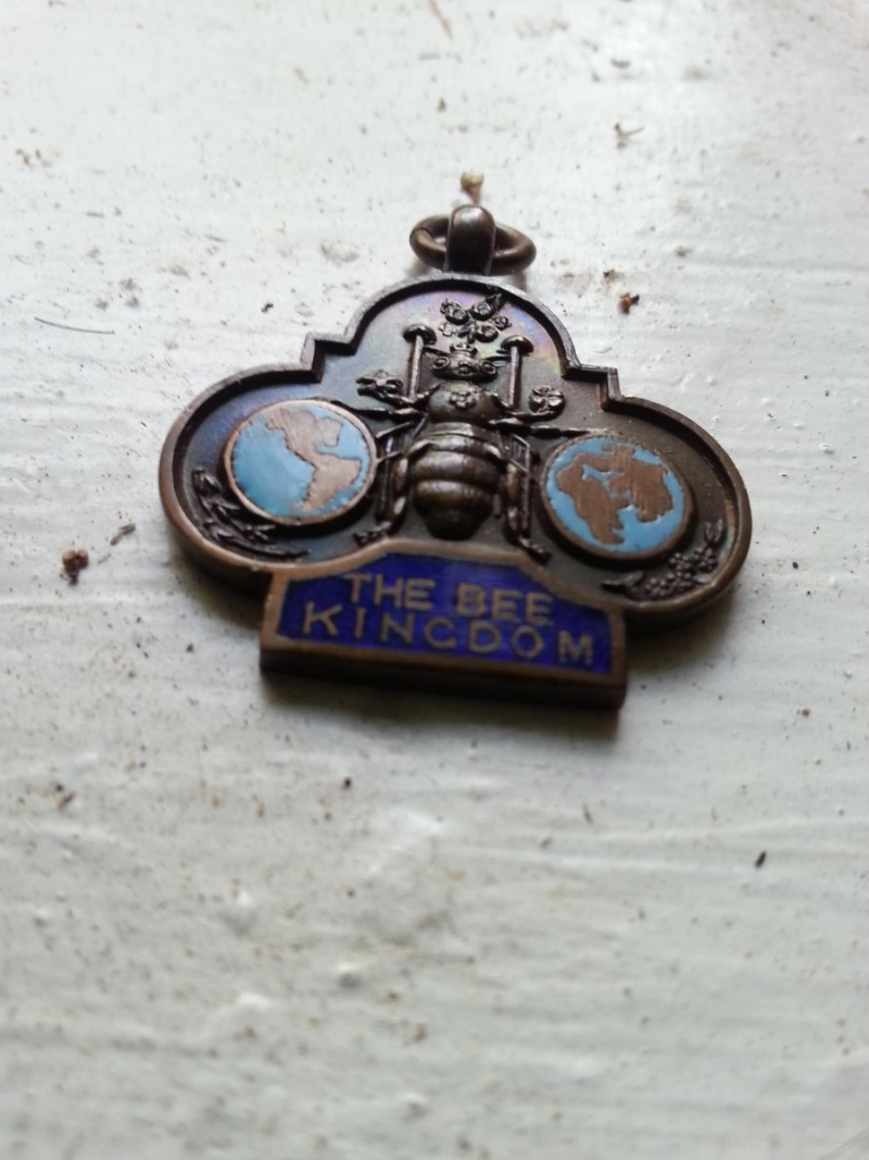 The Bee Kingdom - Medallion1