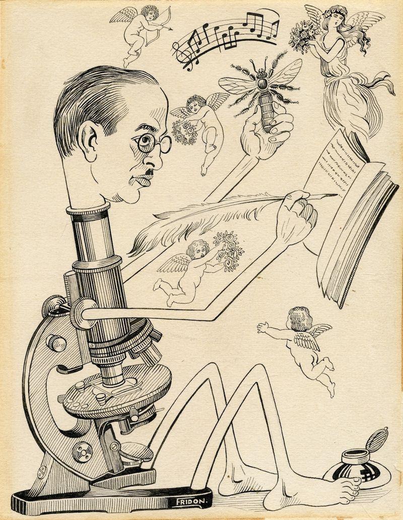 AZA caricature
