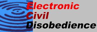 Electronic Disturbance Theater