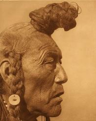 Curtisindian
